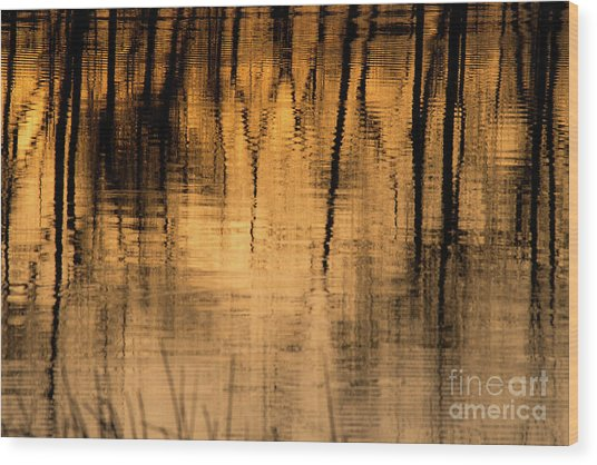 Golden Abstract Wood Print