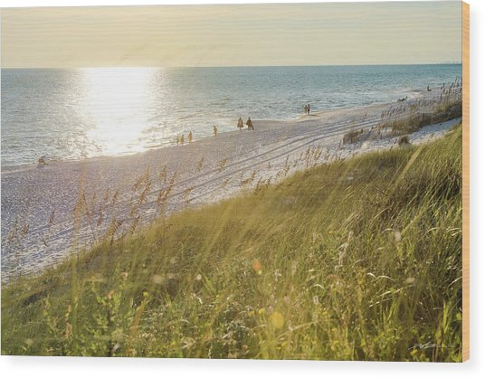 Golden Beach Afternoon Wood Print