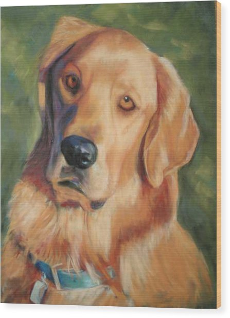 Golden Boy Wood Print by Billie Colson