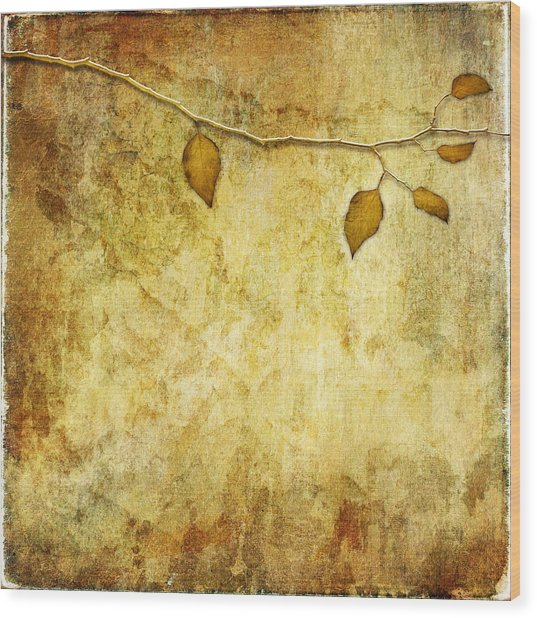 Golden Branch Of Hope  Wood Print