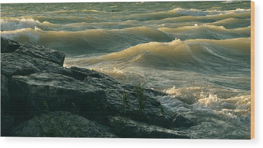 Golden Capped Sunset Waves Of Lake Michigan Wood Print