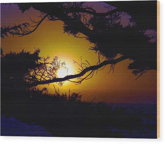 Golden Coastal Sunset Wood Print by Lorrie Morrison