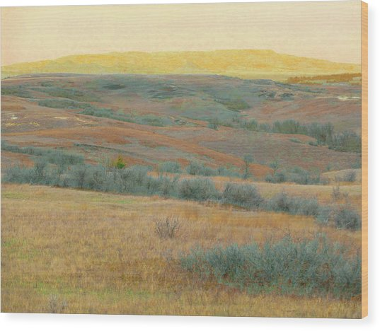 Golden Dakota Horizon Dream Wood Print