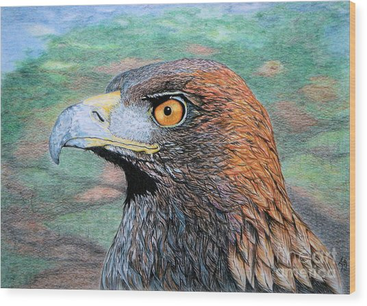 Golden Eagle Wood Print by Yvonne Johnstone