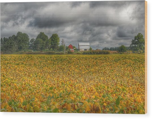 0012 - Golden Fields Farm Wood Print
