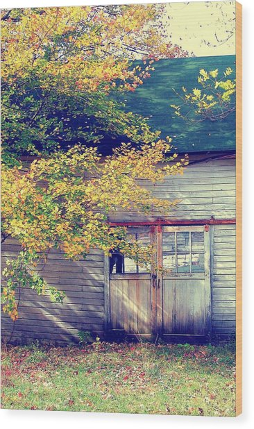 Golden Fall Foliage  Wood Print by JAMART Photography