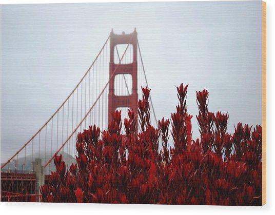 Golden Gate Bridge Red Flowers Wood Print