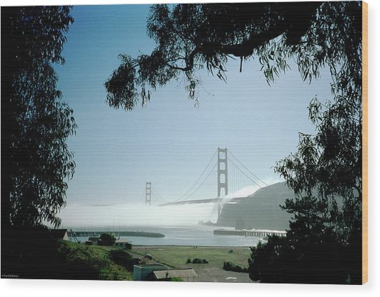 Golden Gate Fog  Wood Print