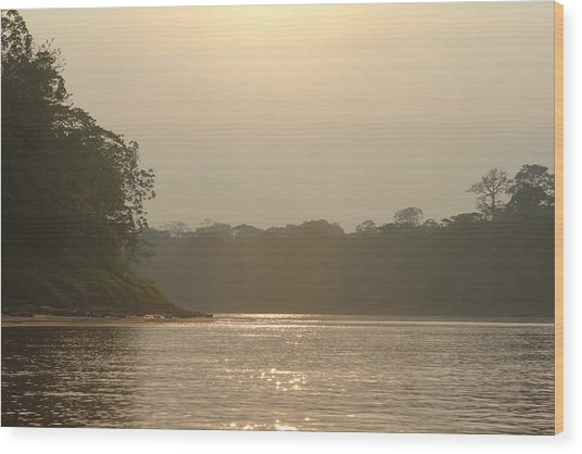 Golden Haze Covering The Amazon River Wood Print