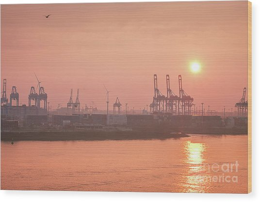 Golden Hour On The Elbe Wood Print