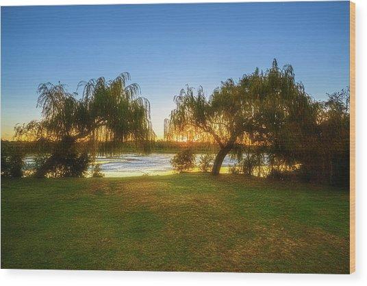 Golden Lake, Yanchep National Park Wood Print