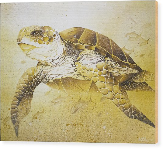 Golden Loggerhead Wood Print