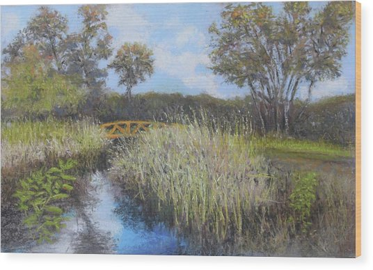 Golden Marsh Wood Print