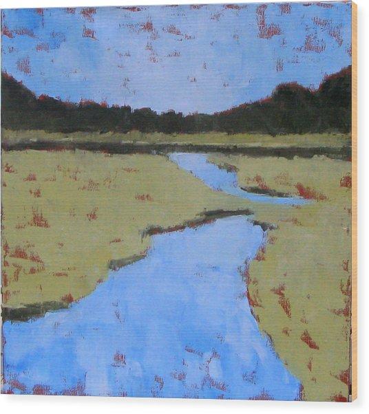 Golden Marsh Wood Print by Donna Thomas