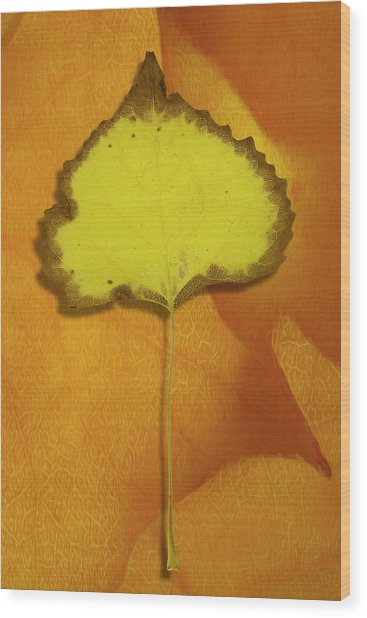 Golden Oldie Wood Print