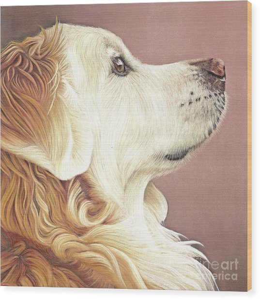 Wood Print featuring the painting Golden Oldie by Donna Mulley
