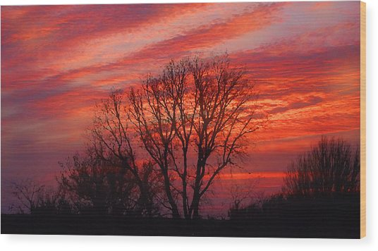 Wood Print featuring the digital art Golden Pink Sunset With Trees by Shelli Fitzpatrick