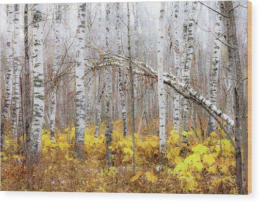 Golden Slumbers Wood Print