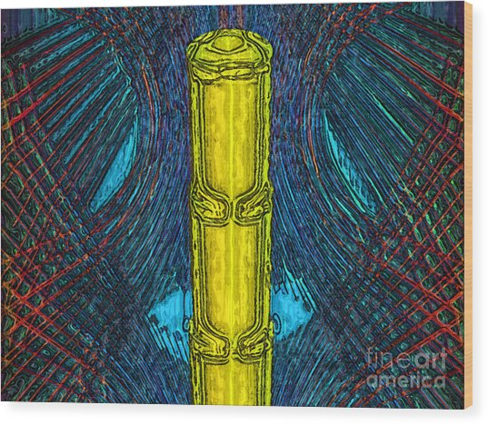 Golden Staff Wood Print by Patrick Guidato