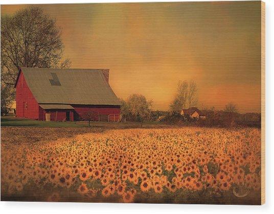 Golden Sunflower Harvest Wood Print