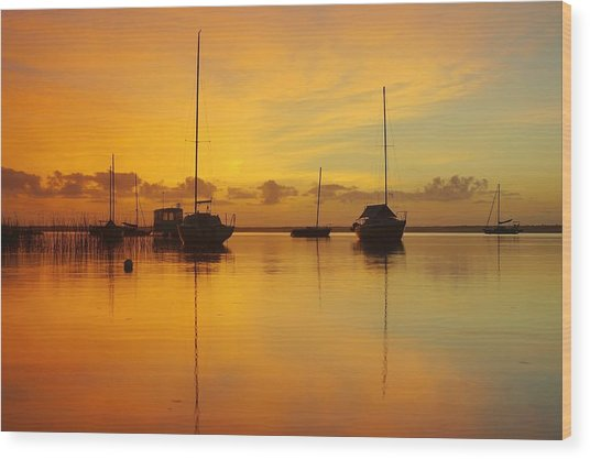 Golden Sunrise At Boreen Point Wood Print