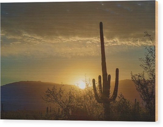 Wood Print featuring the photograph Golden Sunrise by Dan McManus