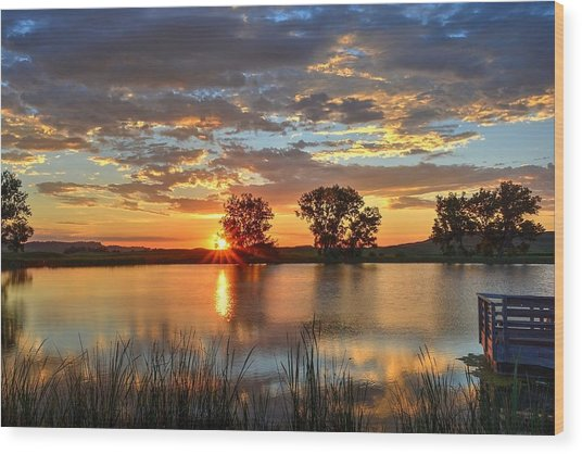 Golden Sunrise Wood Print