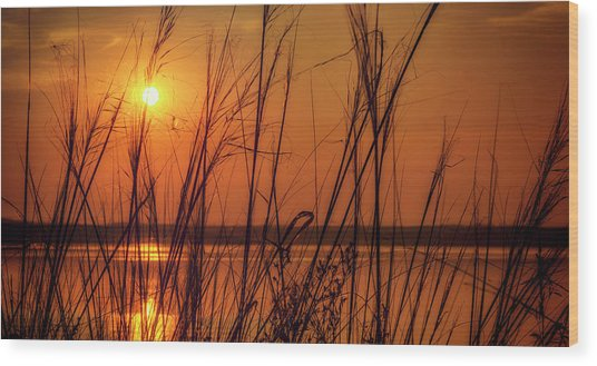Golden Sunset At The Lake Wood Print