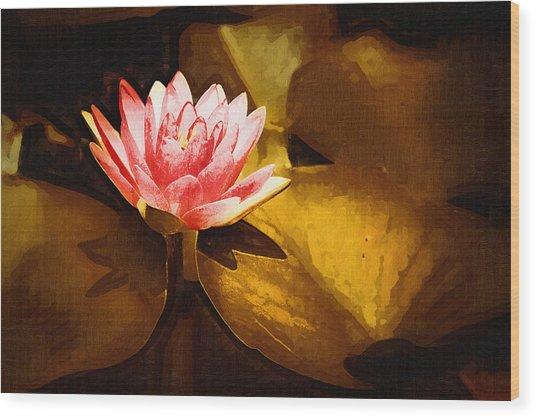 Golden Swamp Flower Wood Print by Paul Bartoszek