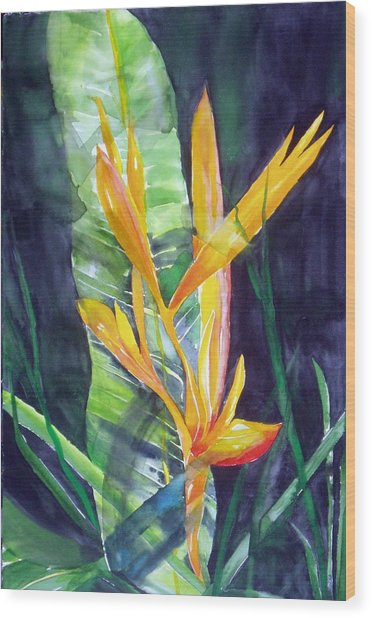 Golden Torch Wood Print by Maritza Bermudez