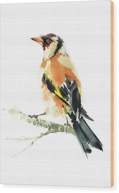 Goldfinch Bird  Wood Print