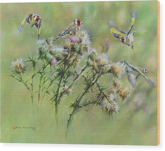 Goldfinches On Thistle Wood Print