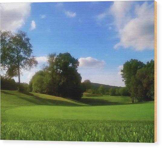 Golf Course Landscape Wood Print