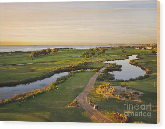 Golfing At The Gong II Wood Print