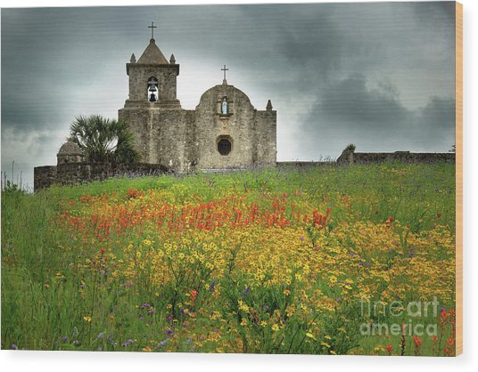 Goliad In Spring Wood Print
