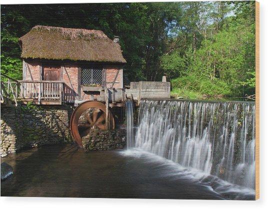 Gomez Mill In Spring #1 Wood Print