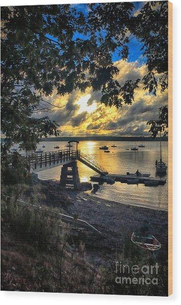 Good Night Madeleine Point Wood Print