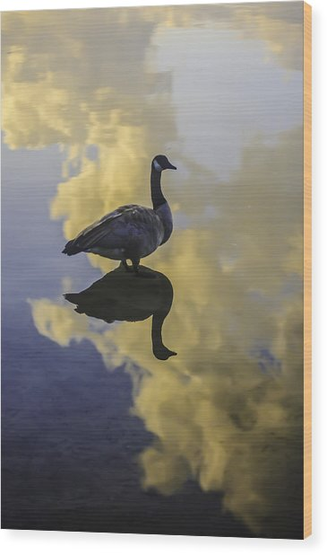 Wood Print featuring the photograph Goose Silhouette 2 by Sherri Meyer