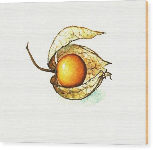 Gooseberry Wood Print