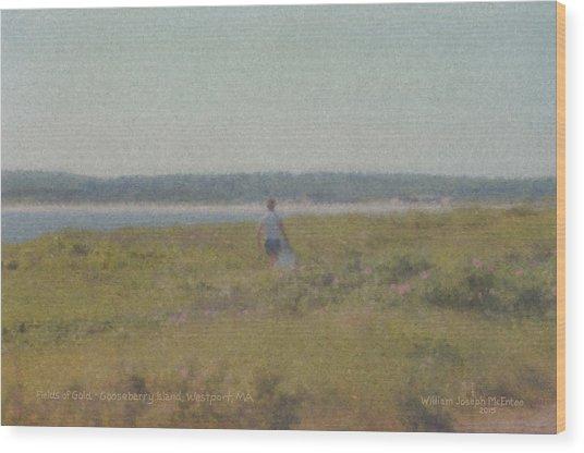 Gooseberry Island Westport Ma Wood Print