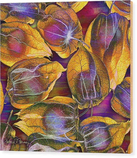 Goosed Berry Pods Wood Print