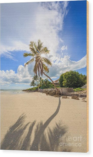 Gordon Pass Naples Florida Wood Print