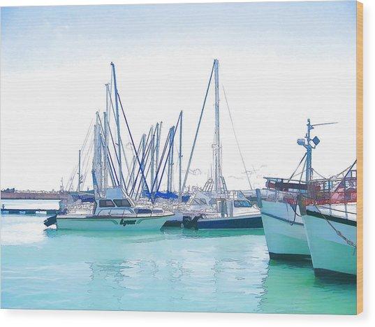 Gordon's Bay Harbour Wood Print by Jan Hattingh