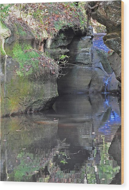 Gorgeous Reflections Vertical Wood Print by Peter  McIntosh