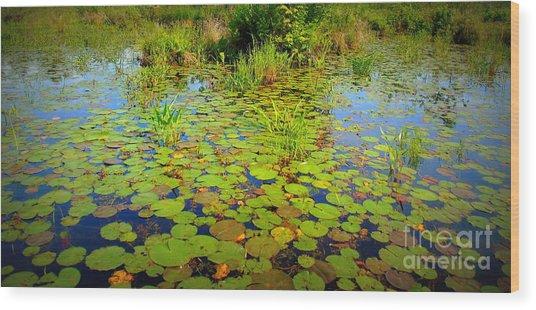 Gorham Pond Lily Pads Wood Print
