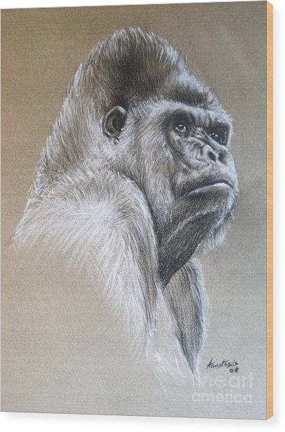 Gorilla Wood Print by Anastasis  Anastasi