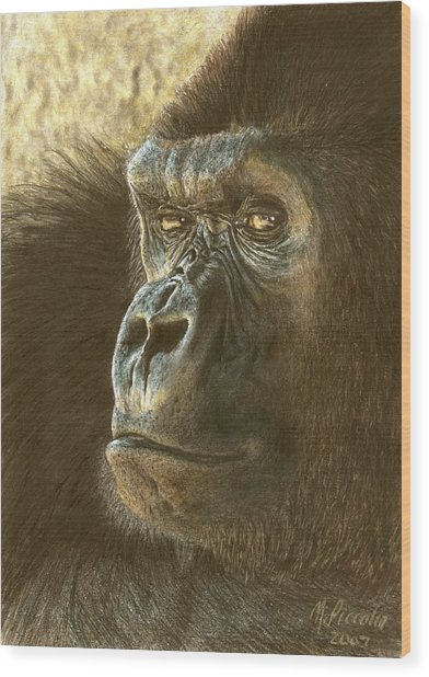 Gorilla Wood Print by Marlene Piccolin