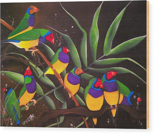 Gouldian Finch Rainbow Wood Print by Una  Miller
