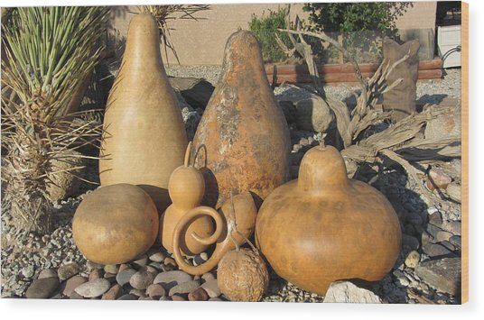 Gourds In The Sun Wood Print