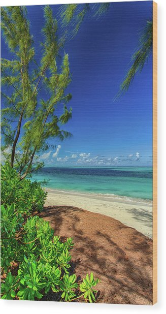 Grace Bay Wood Print